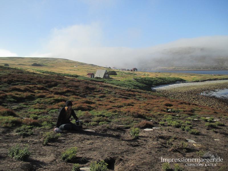 Das Untersuchungsgebiet der Walvögel - hier kann man sich nur mit höchster Vorsicht fortbewegen.